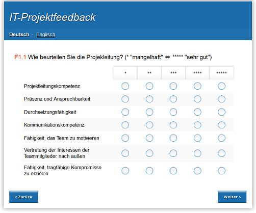 IT-Projektfeddback, Beispiel