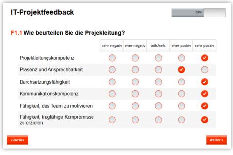 Online-Projektreview, Beispiel